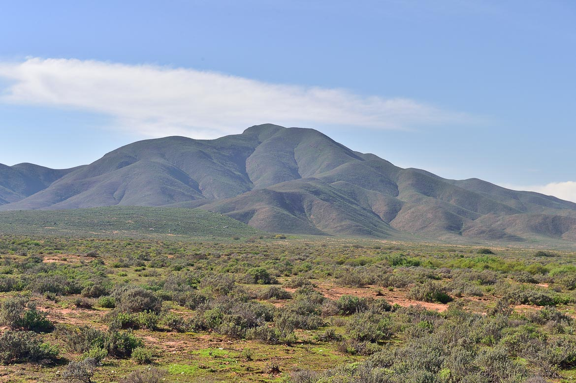 South Africa's National Parks - Richtersveld Transfrontier Park